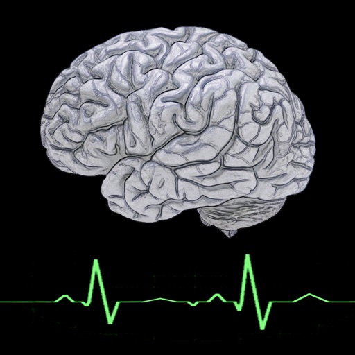 Brain Meter