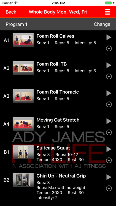 ADY JAMES FITLIFE screenshot three