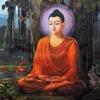 佛教經典全集
