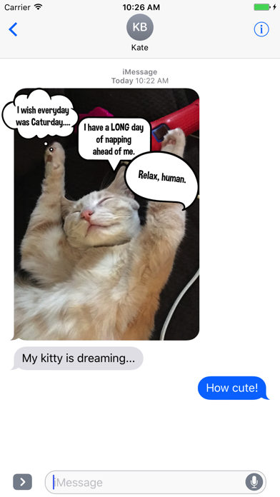 Kitty Thoughts Sticker Pack screenshot two