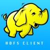 Hadoop HDFS Client
