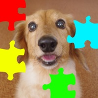 Codes for Dog Jigsaw Puzzle Hack