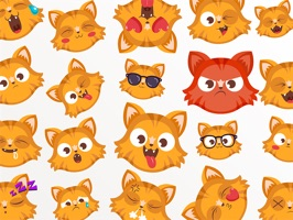 Kitten Emoji - Little Cat Stickers