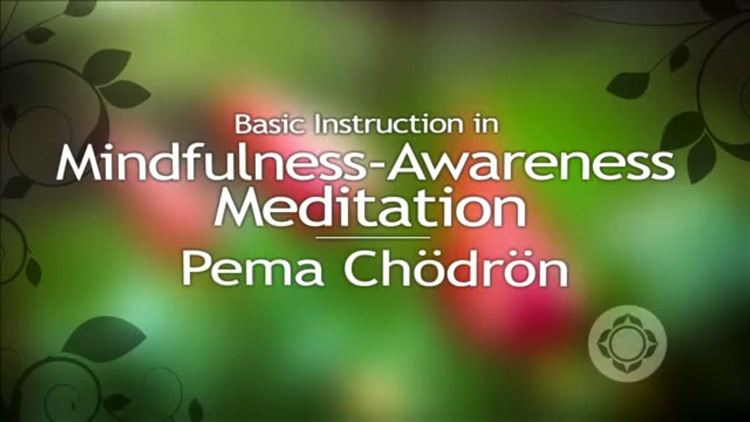 Pure Meditation - Pema Chödrön screenshot-4