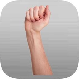 iGestural Language ASL Silver