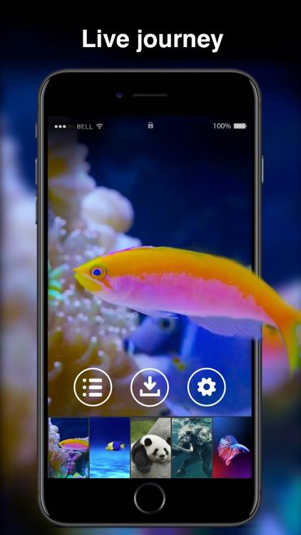 X Live Wallpapers screenshot-3