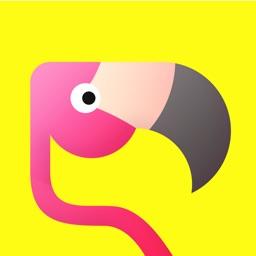 Flamingo - Make More Friends
