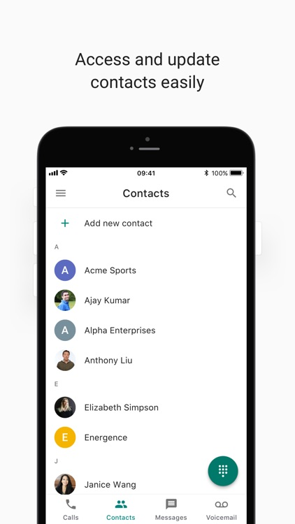 Google Voice screenshot-3
