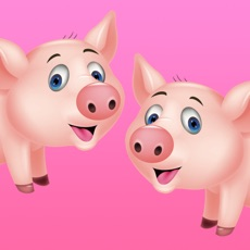 Activities of Count The Pigs