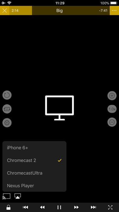 Скриншот №5 к nPlayer