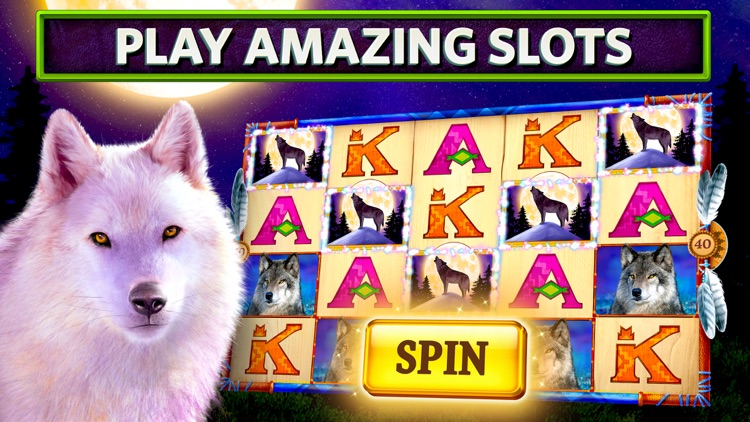 Slots on Tour: Wild HD Casino screenshot-0