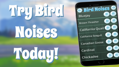 鳥の音のおすすめ画像1