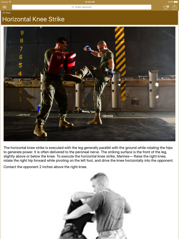 Marine Martial Arts screenshot