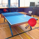 Hack Table Tennis Touch