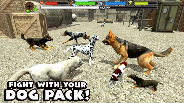 Stray Dog Simulator screenshot-1