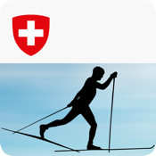 Cross-country skiing – Technique icon