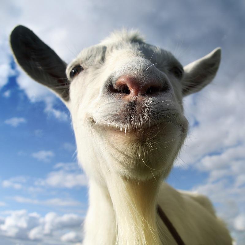 Goat Simulator Hack Tool
