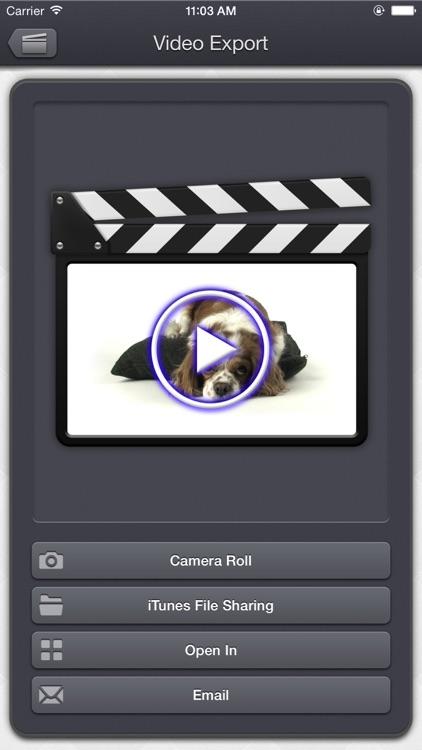 Video Audio Remover - HD