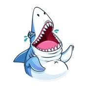 Funny Shark Sticker 2019