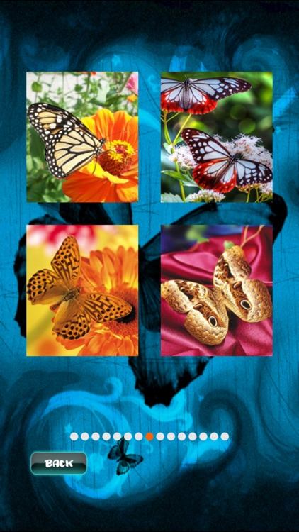 Butterfly Jigsaw screenshot-3