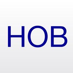 HOBLink iWT a