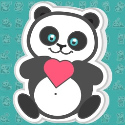 Panda Bear : Animated Stickers