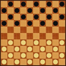 Activities of Maximus Draughts