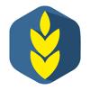 AGRI - Мобильная платформа для торговли зерновыми