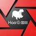 Hao球——赛事运营管理专家