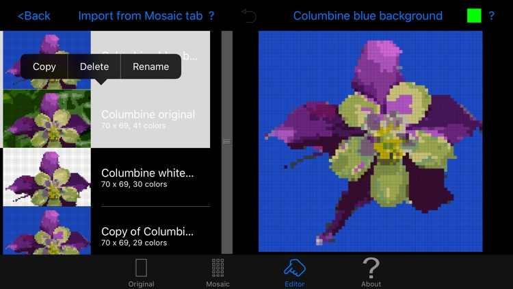 Color Hints Mosaic screenshot-4