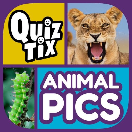 QuizTix: Animal Pics Quiz