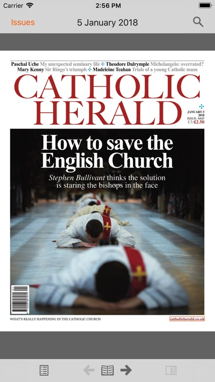 The Catholic Herald screenshot-4