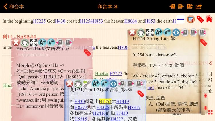 Handy Bible Chinese Pro 隨手讀聖經 screenshot-4