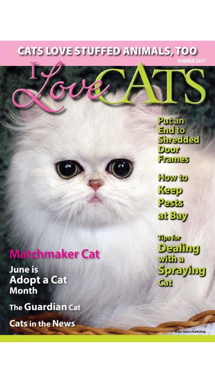 I Love Cats Magazine