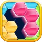 Hack Block! Hexa Puzzle™