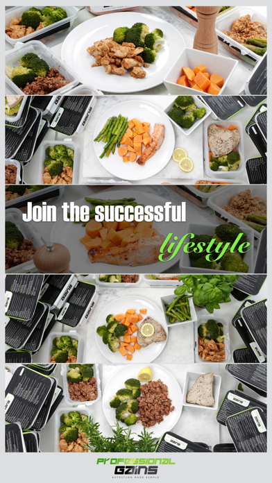 Professional Gains Meals