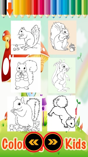 A Little Squirrel Animals Zoo Coloring Books on the App Store