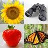 簡単な写真 - 5つのトピックに画像をクイズ - iPhoneアプリ
