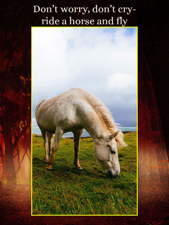 Horses Wallpapers Add Text On The App Store