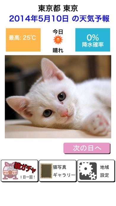猫天気〜天気予報&可愛い猫写真〜紹介画像1