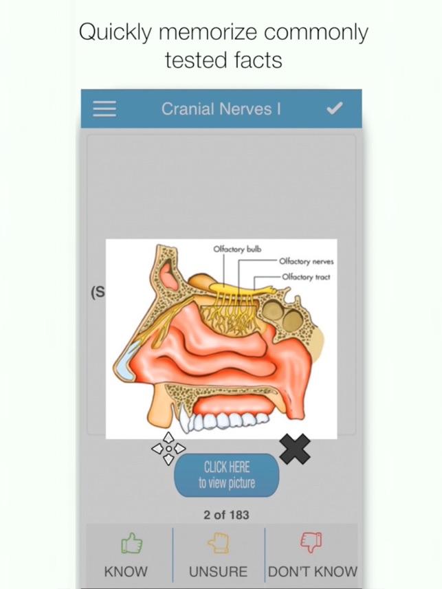 Wunderbar Hulu Grau Anatomie Ideen - Anatomie Ideen - finotti.info