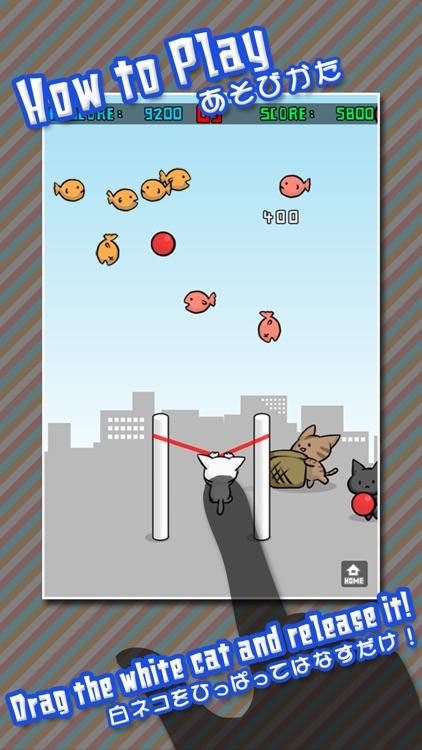 Cat Shot screenshot-0