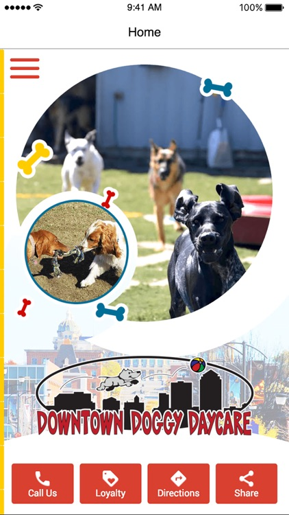 Downtown Doggy Daycare by AppZoom