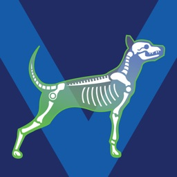 Bone Viewer - Dog Skeleton