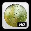Rain HD - Joacim Ståhl