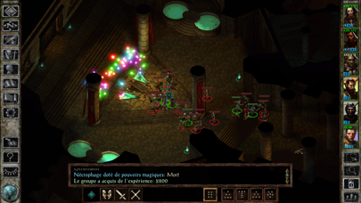 Screenshot #3 pour Icewind Dale