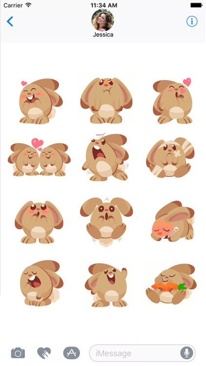 Little Bunny Stickers