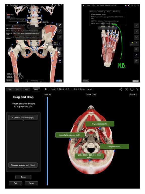 Muscle System Pro III Screenshot 2