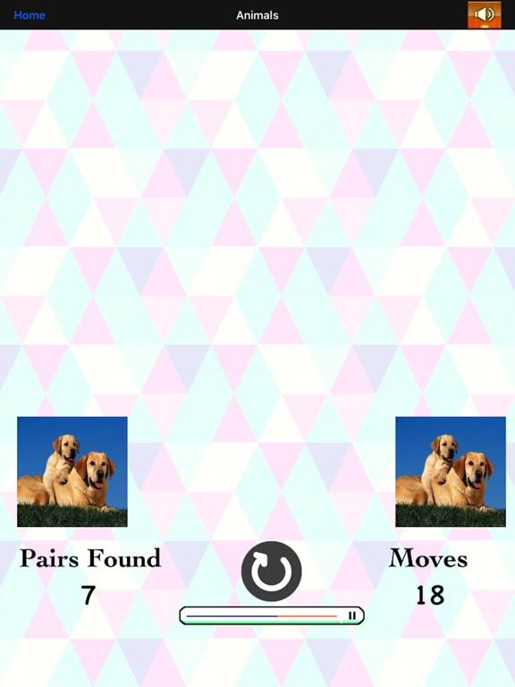 Match Card Pair screenshot 10