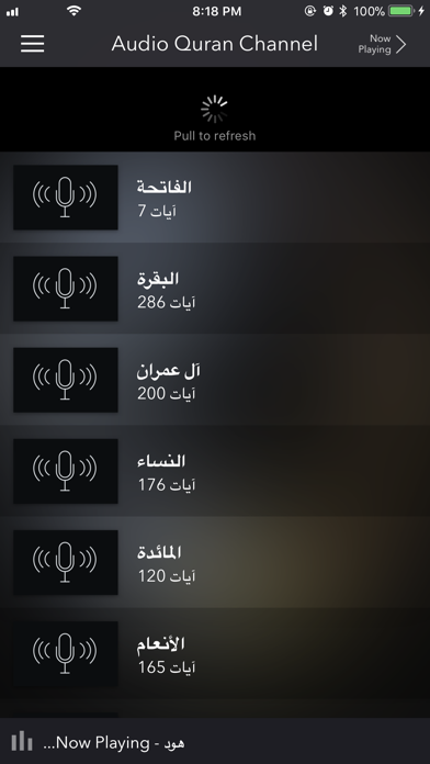 Audio Quran Channel screenshot four